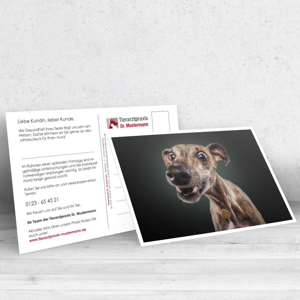 Christian Vieler Postkarten für Tierärzte - www.ruhmservice.de