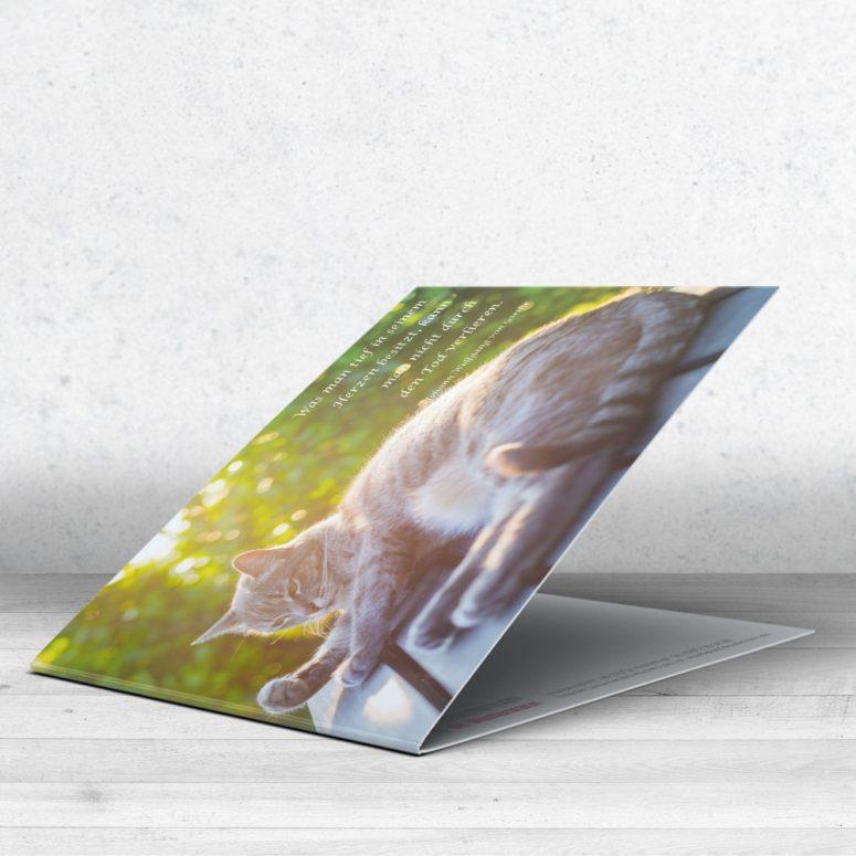 Trauerkarte Katze für Tierärzte - Motiv 09 im Ruhmservice Shop