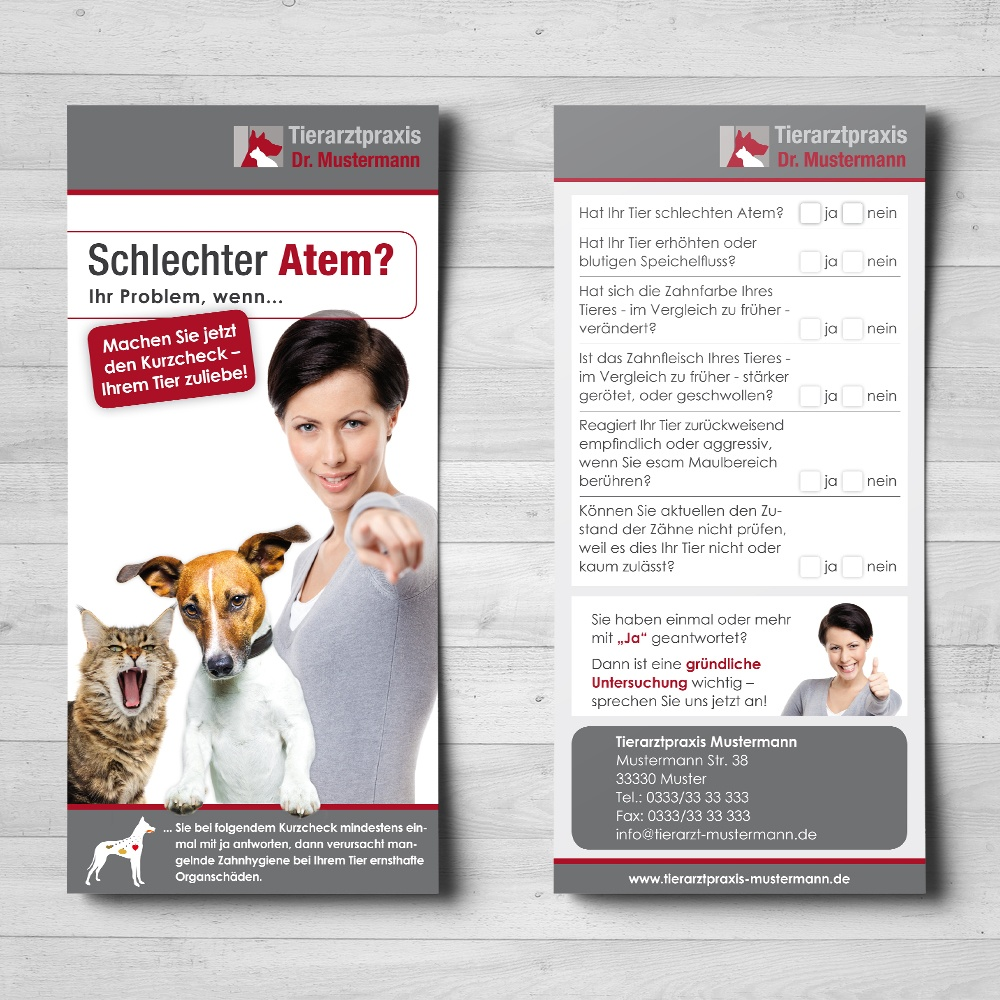 Dental-Diagnose-Flyer Veterinärmedizin