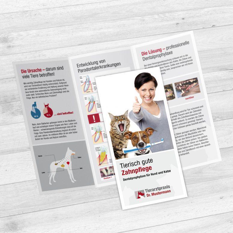Dental Folder Tierarzt