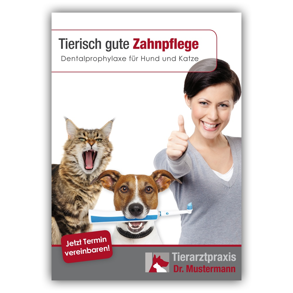 Recallkarte Tierarztpraxis Dental