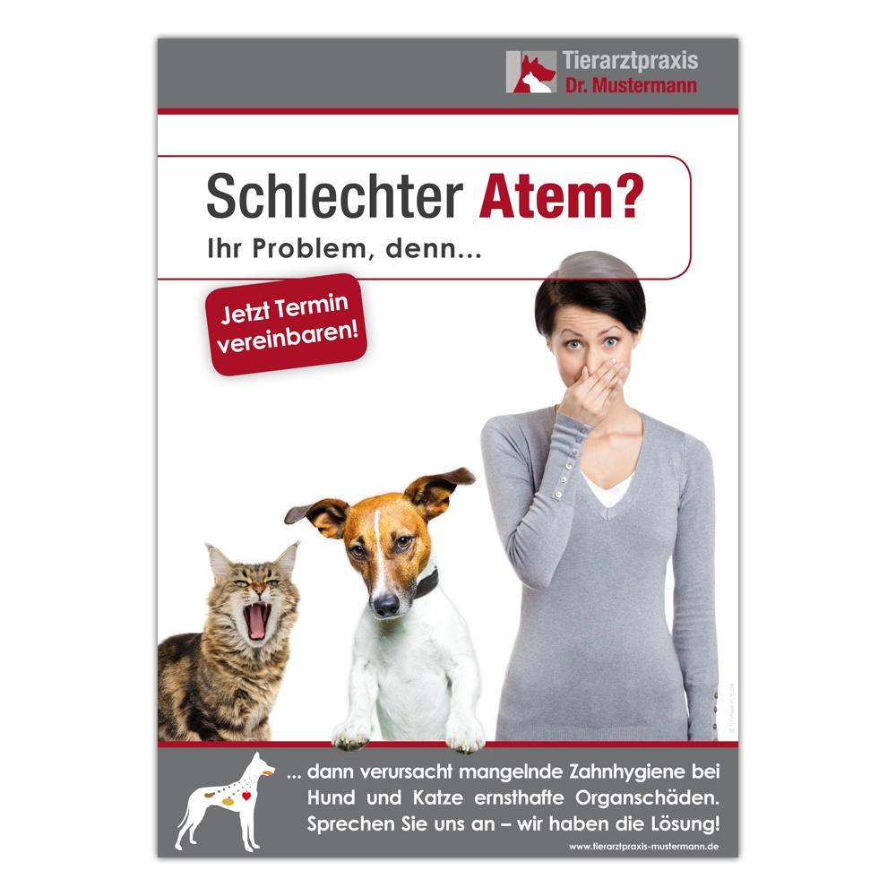 Dental-Poster Tierarztpraxis