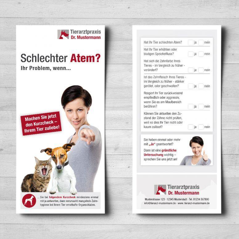 Dental Flyer Tierarzt