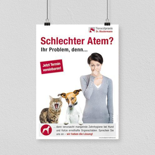 Dental Poster Tierarzt
