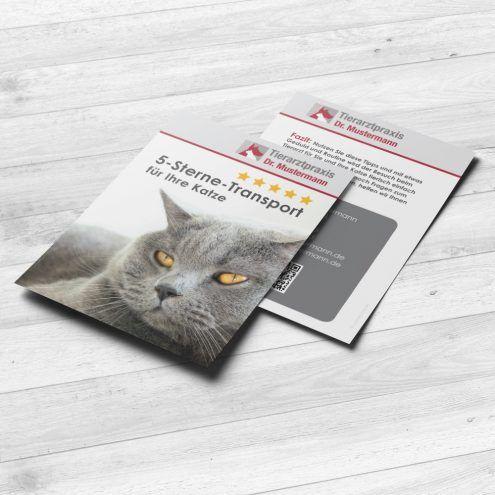 Katzenpraxis-Tools