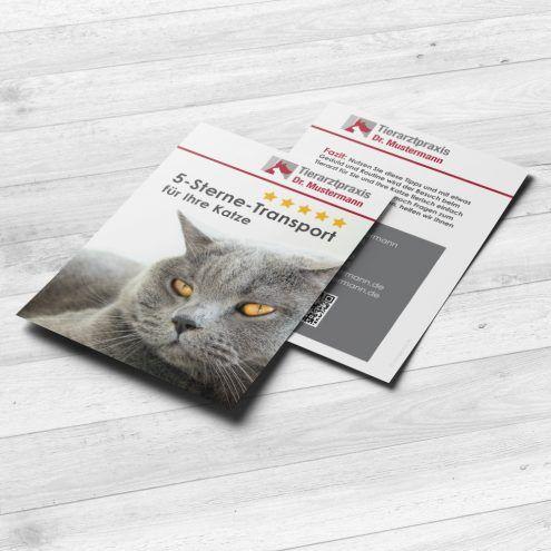 Broschüre Katzentransport