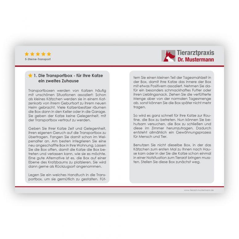 Tipps Katzentransport Ruhmservice - 4-5
