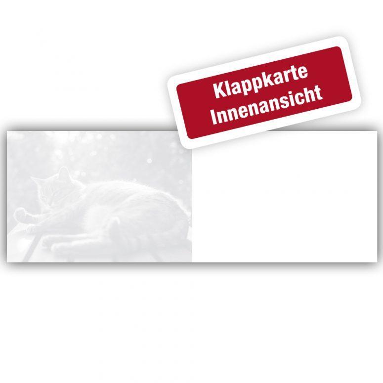 Trauerkarte Katze Trauerkarten-Box für Tierärzte