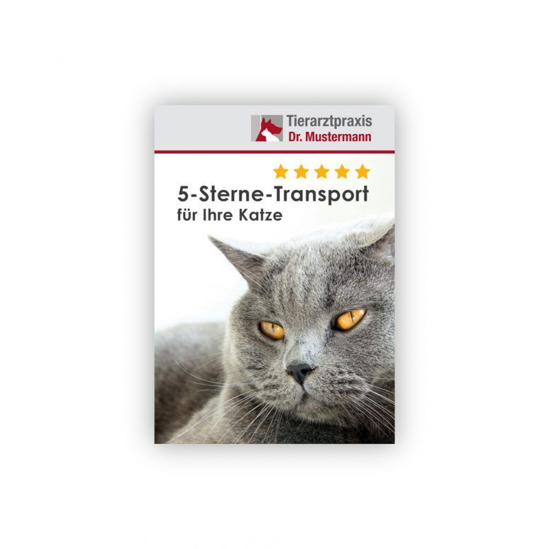 Broschüre Katzentransport Ruhmservice Vorderseite