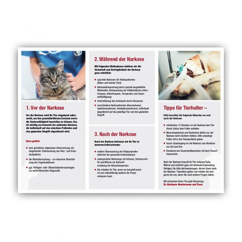 Narkoseeinwilligung Tierarzt