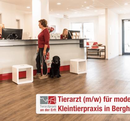 Stellenangebot:  Tierarzt (m/w) für moderne Kleintierpraxis im Erftkreis gesucht!