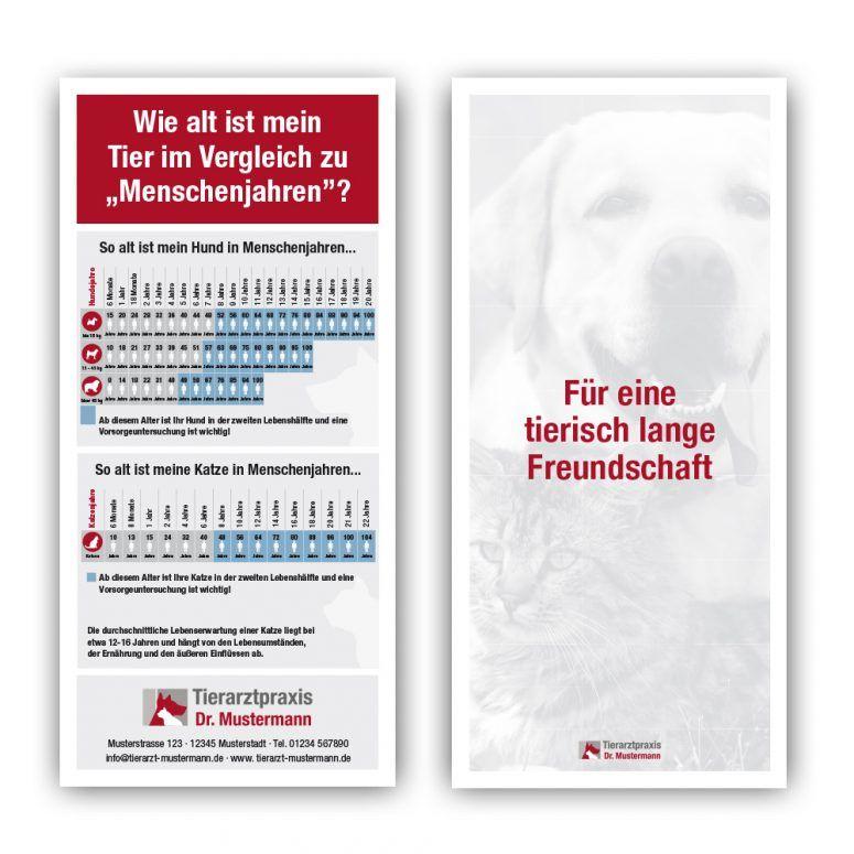 Geriatrie Flyer Tierarzt