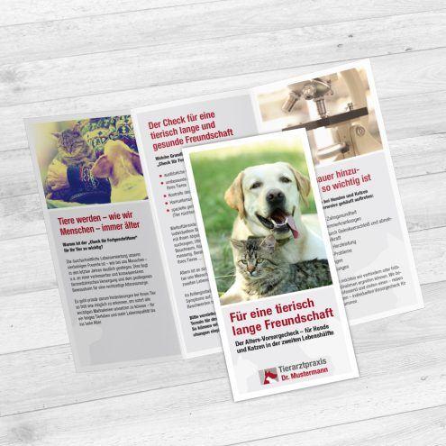 Tierarzt Flyer Altersvorsorge