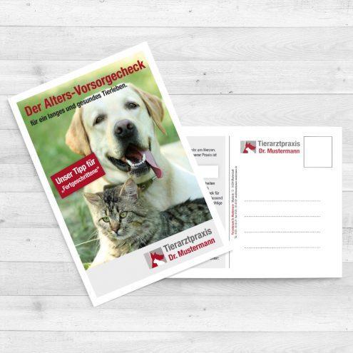 Reclam Karte Geriatrie Tierarzt