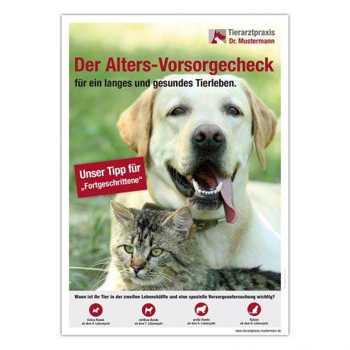 Poster Geriatrie Hund Katze