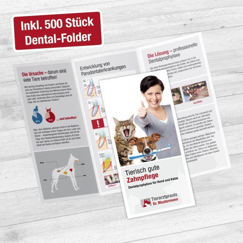 Broschüre Dental Tierarzt