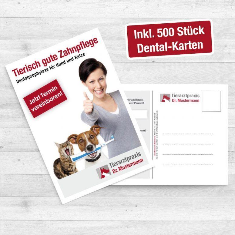 Reclam Tierarzt Dental