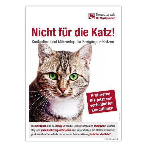 Katzen Kastrationspflicht Poster A1