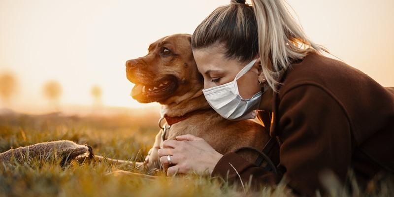 Aktuelle Umfrage des Haustier-Trendbarometers: Corona-Pandemie bewegt Tierhalter in besonderer Form