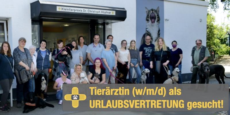 URLAUBSVERTRETUNG: Tierärztin (w/m/d) für moderne Kleintierpraxis in Mülheim a.d. Ruhr gesucht!