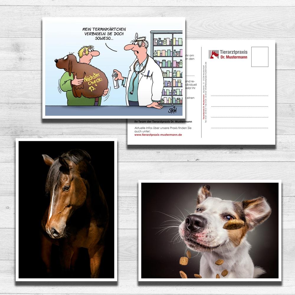 Erinnerungskarten tierarztpraxis